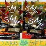SMF2012__24_